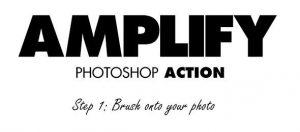 Amplify (1)