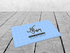 business-card-mock-up2