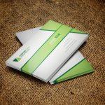 دانلود کارت ویزیت Business card S01