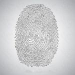 ۳ وکتور اثر انگشت